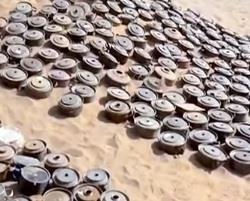 انتشال أكثر من 35 ألف لغم زرعها الحوثيون قبل انسحابهم من مأرب