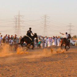 برعاية آل طاوي.. تدشين مهرجان وقف السليمانية التركي بالحارة المكية