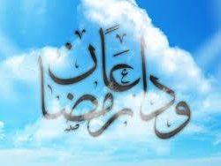 خيار من خيار في شرف خدمة ضيوف الرحمن.. بقلم: خالد السقا