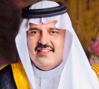 """لأول مرة.. حائل تحتضن بطولة لـ""""جمال"""" الخيل العربية"""