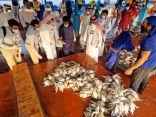 مصادرة وإتلاف 644 كيلو جراما من المنتوجات السمكية الفاسدة بسوق السمك المركزي بمحافظة جدة