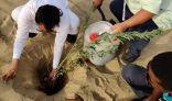 تنفيذ مبادرة زراعة الأشجار الصحراوية بمدينة الجموم